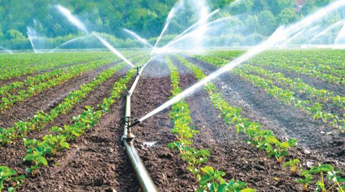 سیستم آبیاری هوشمند